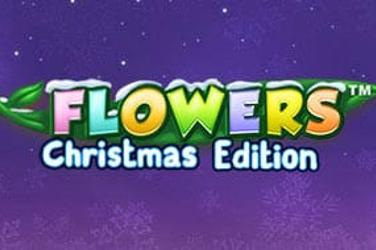 Xmas Flowers